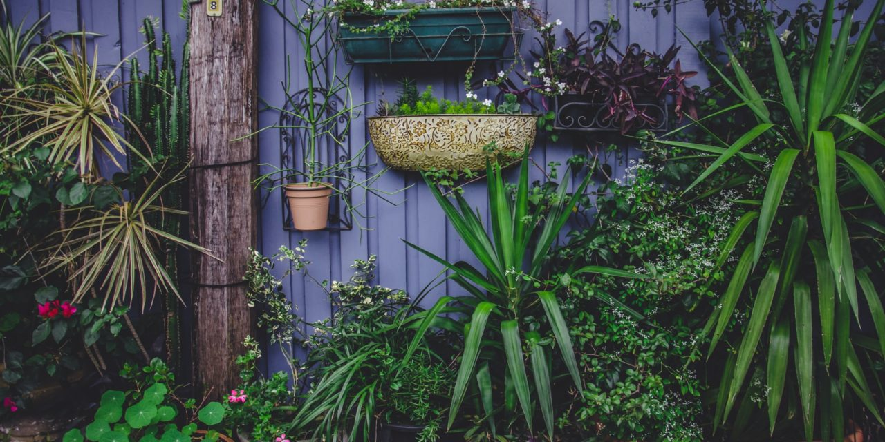 Landscaping Ideas From Assessing Family Needs
