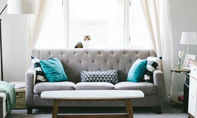 Tips to Buying a Leather Sofa